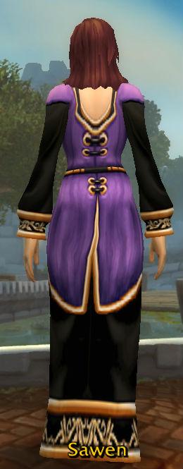 High Councillor's Robe back