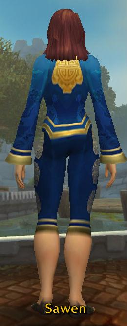 Festive Blue Pant Suit back