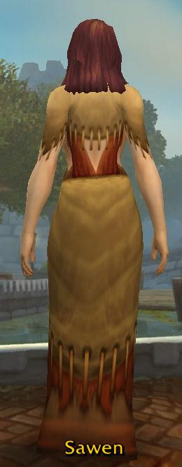 Novice's Robe back
