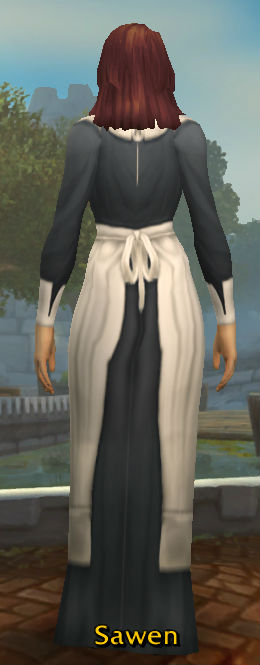 Pilgrim's Dress back