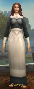 Pilgrim's Dress