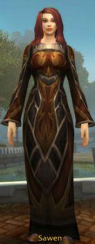 Aerie Robe