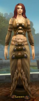 Stonecloth Robe