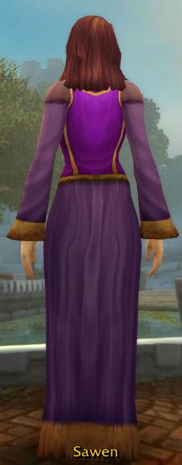 Dalaran Wizard's Robe back