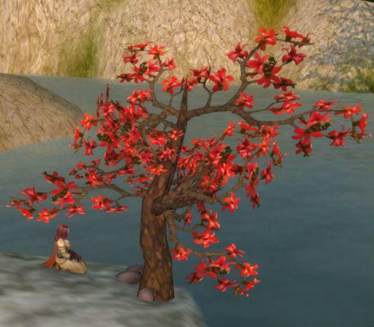 Autumn Blossom Tree