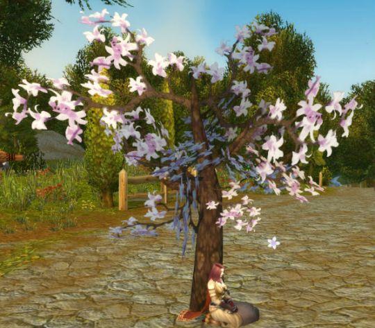 Winter Blossom Tree