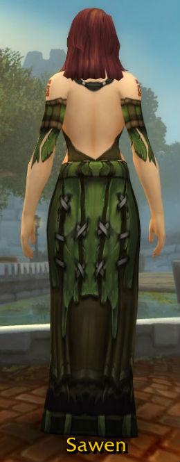 Anchorite Robe back